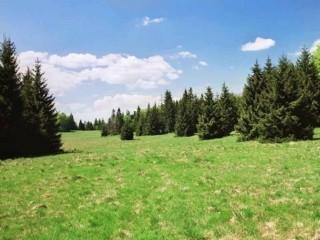 Horská planina Geravy