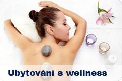 Ubytování s wellness