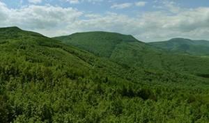 Slanske Hills
