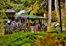 Lesná železnica na Kysuciach